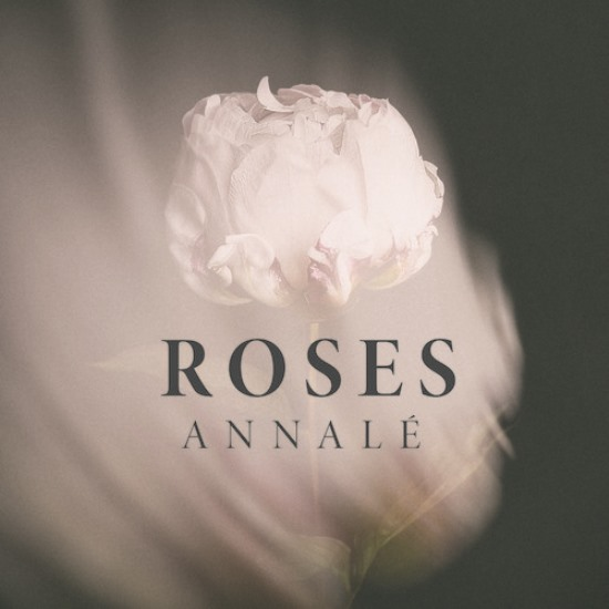 annale_roses_med_res